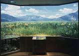 Image of Ozegahara moor (diorama)